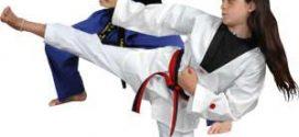 تفاوت بین کاراته و تکواندو The difference between karate and taekwondo